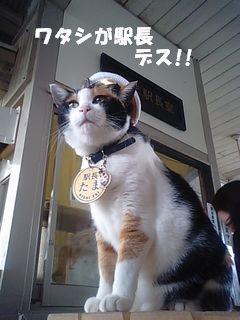 たま駅長2.jpg